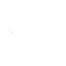 photographer-logo-design-for-content-development-partnerships-in-surprise-az
